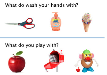 Autism & Special Education 'What' Questions Task Cards