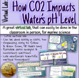 [Fully Virtual Lab] Carbon Cycle Lab: How does CO2 Impact