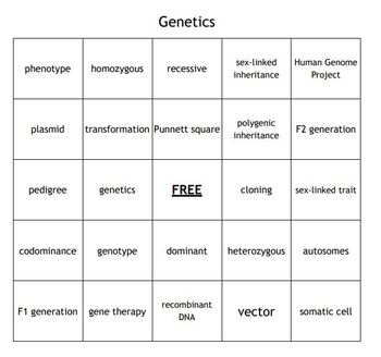 """""""Genetics"""" Vocabulary Bingo for a Middle School Science Course"""