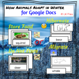 """""""How Animals Adapt In Winter"""" for Google Docs - Ideal for"""