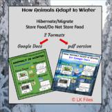 """How Animals Adapt"" for Google Docs & PDF format BUNDLE -"