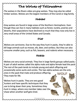 """""""How Wolves Change Rivers"""" Video Guide"""