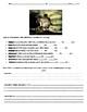 """I Am Legend"" by Richard Matheson Worksheets, Art Projects, & Assessment Unit"