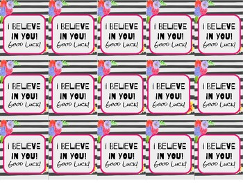 """I Believe in You"" Testing Motivational Brag Tags"