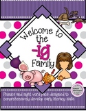-IG WORD FAMILY PHONICS AND SIGHT WORD WORK EARLY LITERACY DECODING