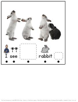 Plural Nouns -S: Grammar Interactive Series