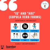 """""""Is"""" and """"Are"""" (Copula Verb Forms) Sentence Workout"""