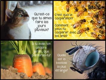 {J'aime Écrire: le printemps!} French Spring writing prompts with real pictures