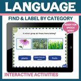 Categories expressive receptive No Print No Prep