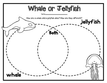 """""""Jellies"""" a 2nd Grade HMH Journeys Story Pack"""