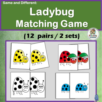Same and Different: Ladybug Matching Game for Preschool &