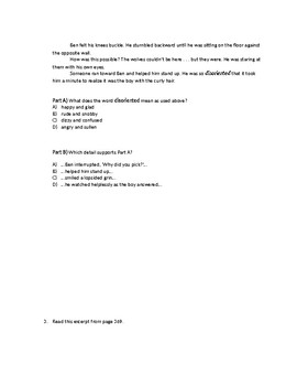 (LEAP/PARCC-like) 5th Guidebook Wonderstruck Part Two Test