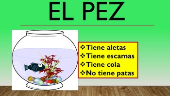 """""""LAS MASCOTAS"""" -Write """"Tener""""Statements -Guess the Pet in Spanish- Adjectives"""