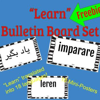 """Learn"" Bulletin Board Mini Posters Set"