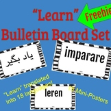 """Learn"" Bulletin Board Mini Posters Set"