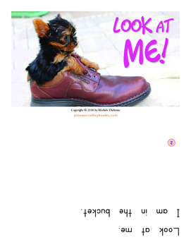 """""""Look at Me!"""" (BOOK by Michele Dufresne Level 2/B)"""