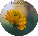 """Marigolds"" by Eugenia Collier Short Story Assessment"