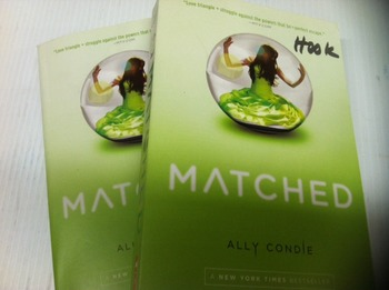 """""""Matched"""" books, by Ally Condle - Literature Circle Set"""