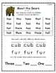 """Meet the Bears"" Guided Reading Program Work"