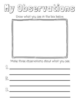 'My Observations' Worksheet