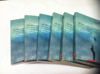 """My Side of the Mountain "" books, by Dahl- Literature Circle Set"