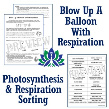 NGSS Photosynthesis, Respiration, & Carbon Cycle Activity BUNDLE **SAVE 30%**
