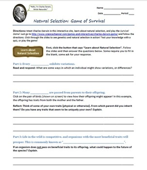 """""""Natural Selection"""" Mini Webquest - Worksheet to go with interactive site"""