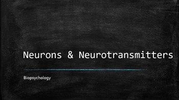 """""""Neurons and Neurotransmitters"""" Psychology PowerPoint"""
