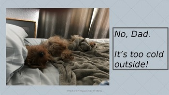 """No Dad, it's too cold outside!"" POSITIVE DOG POWERPOINT POSTER"
