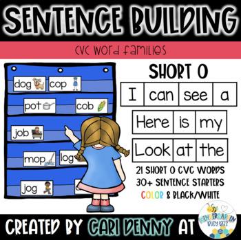 -OT Word Family Sentence Building