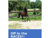 """""""Off to the Races"""" - A probability Dice game"""