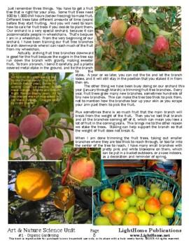 """Organic Gardening"" Art & Nature Science Unit"