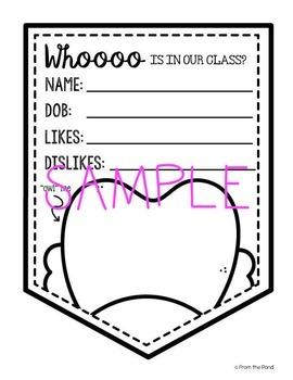 """Owls"" Classroom Banner Pack"