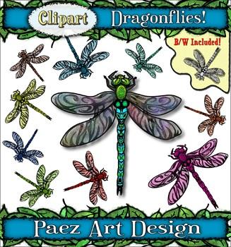 Dragonfly Clipart {PAEZ ART DESIGN}