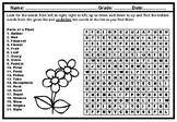 'Parts of a Plant' Word Search Puzzle Worksheet, No Prep Sub Plan