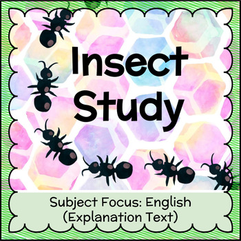 'Pimp my Insect' Explanation Text FREEBIE!
