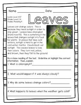 (Plants) Leveled Passages Guided Reading Levels I,J,K (Lexiles 290-440)
