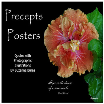 "Wonder ""Precepts"" Posters and Calendars"