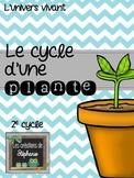 { Projet de sciences } Le cycle d'une plante