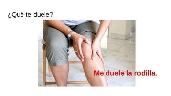 ¿Qué Te Duele? Spanish Body Parts/Partes del Cuerpo
