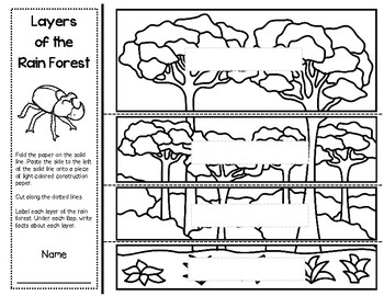 """""""Rain Forests"""" A McGraw Hill Wonders Book Study"""