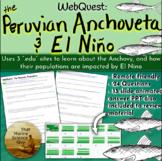 [Remote Friendly] Webquest: Peruvian Anchoveta, Upwelling,