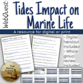 [Remote friendly] WebQuest: How Tides Impact Ocean Life w/