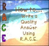 Beach Themed R.A.C.E. Constructed Response Posters