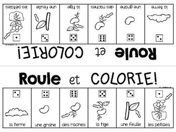 {Roule et Colorie: les fleurs!} A French vocabulary game