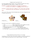 """""""Rules"""" for Irregular plurals with worksheets"""