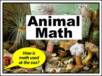 (SALE!) Animal Math