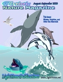 """Sea Mammals"" Art & Nature-Science Unit"