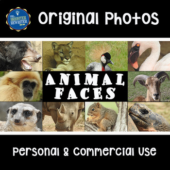 Photos for Commercial Use: Animals