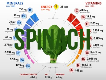 (Spinach) Nutritional information & percentage composition charts